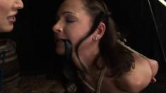Lusty dominatrix makes a hot brunette choke on a massive black dildo