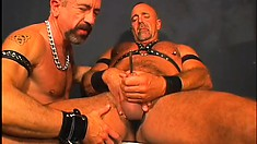 Two gay bears in leather get their mac daddy on and blow their loads