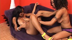 Sexy ebony babes share their sweet chocolate snatches with each other