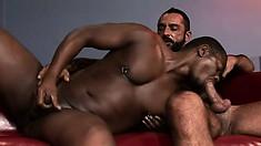 He sucks his big black cock then has him fuck his black asshole
