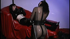 Anastasia Pierce is a latex covered master who teases her slave