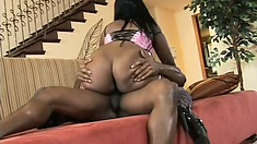 Curvaceous Aymee Austin has a hung black guy drilling her ebony peach
