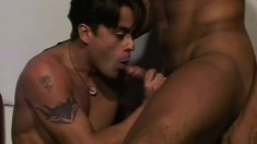 Handsome studs with great muscles get down to fuck with a shemale