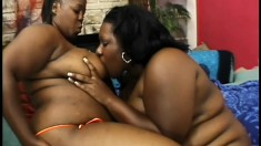 Chubby ebony ladies enjoy a nasty session with pussylicking and toys